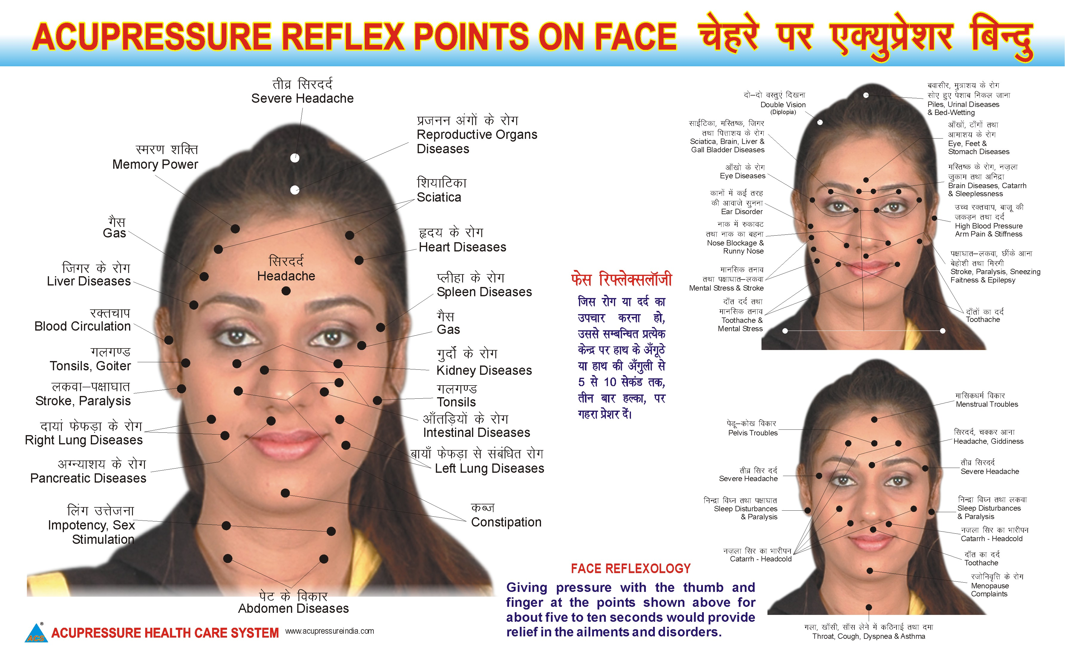 Face Reflexology Chart-Face