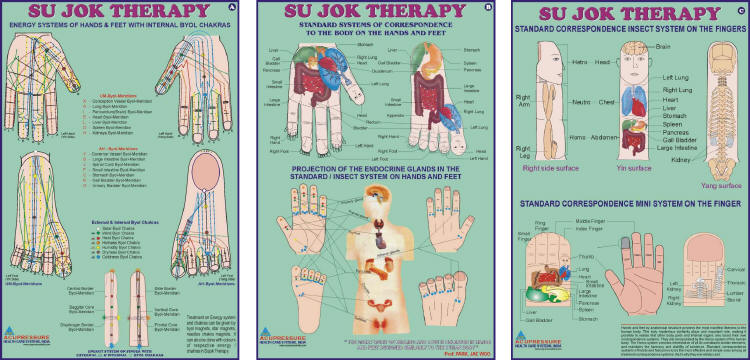Sujok Therapy Chart-Set of 3 - 20