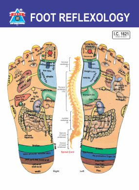 Acupressure Reflexology - V.Card - Foot (100pc)