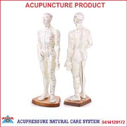 Acupuncture Model-Human Body Single  - 1101